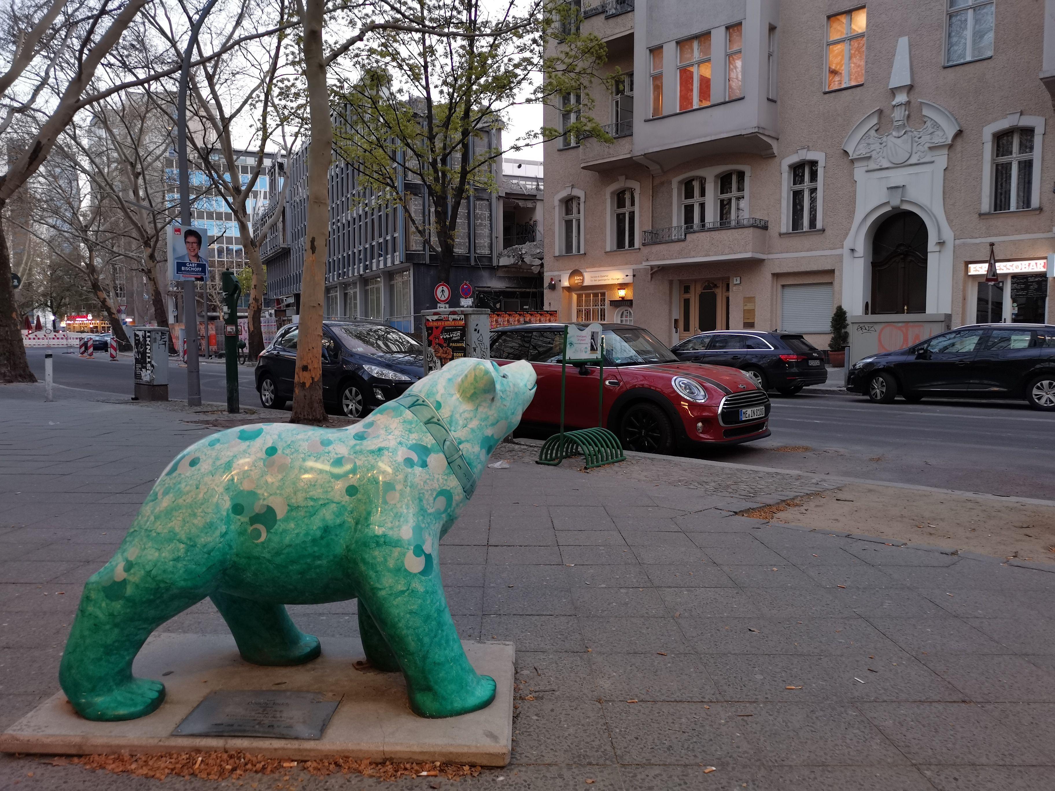 Programvaren i kameraet avgjør fargemetning og hvitbalanse. Her er bjørnen grønn.