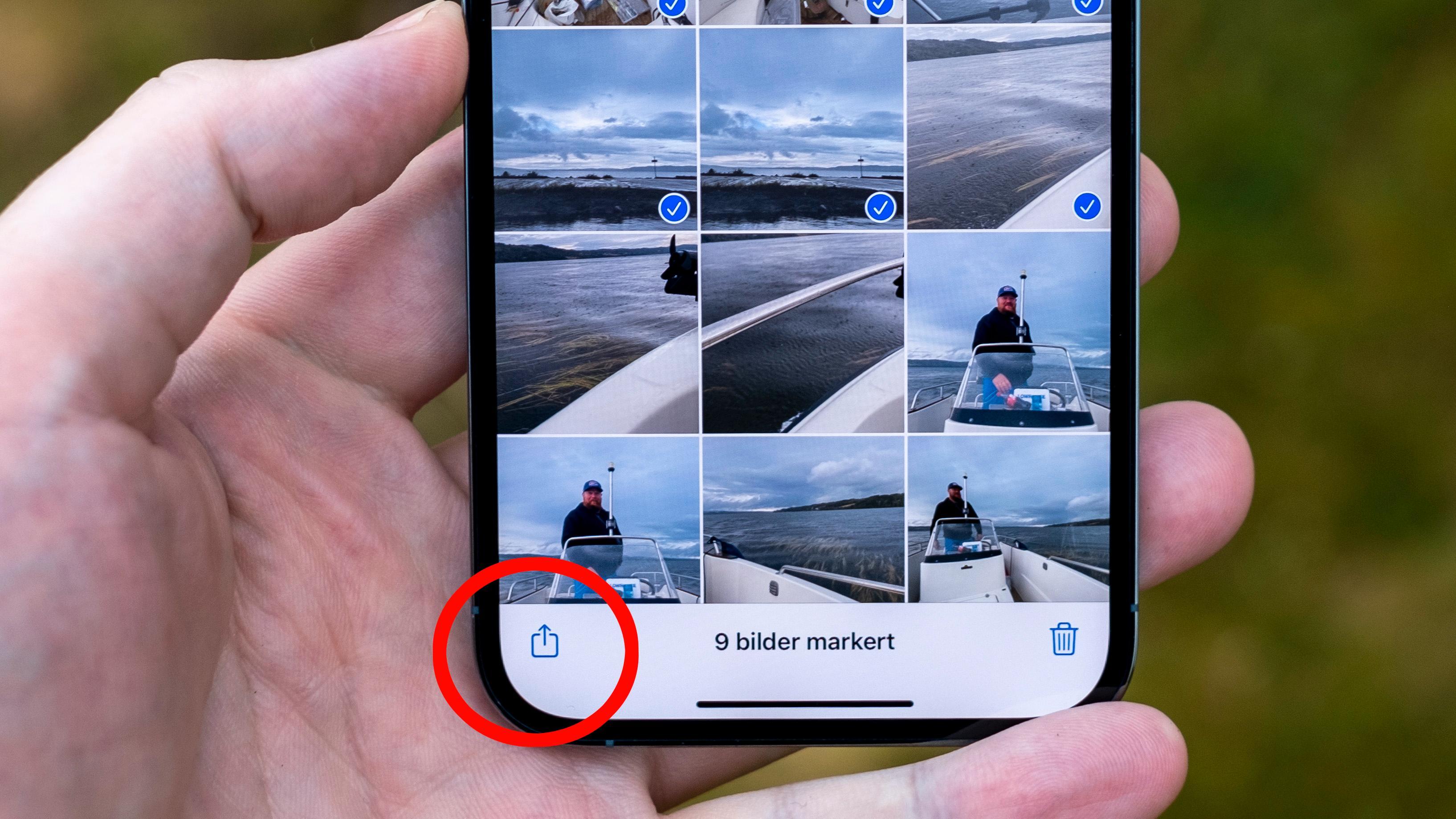 Del bildene ved å bruke deleknappen nederst til venstre.