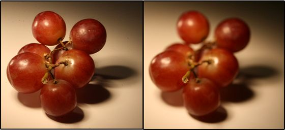 Avstand, zoom og fokuspunkt er identisk; bildet til venstre er tatt med et høyt blendertall mens bildet til høyre er tatt med et lavt blendertall.