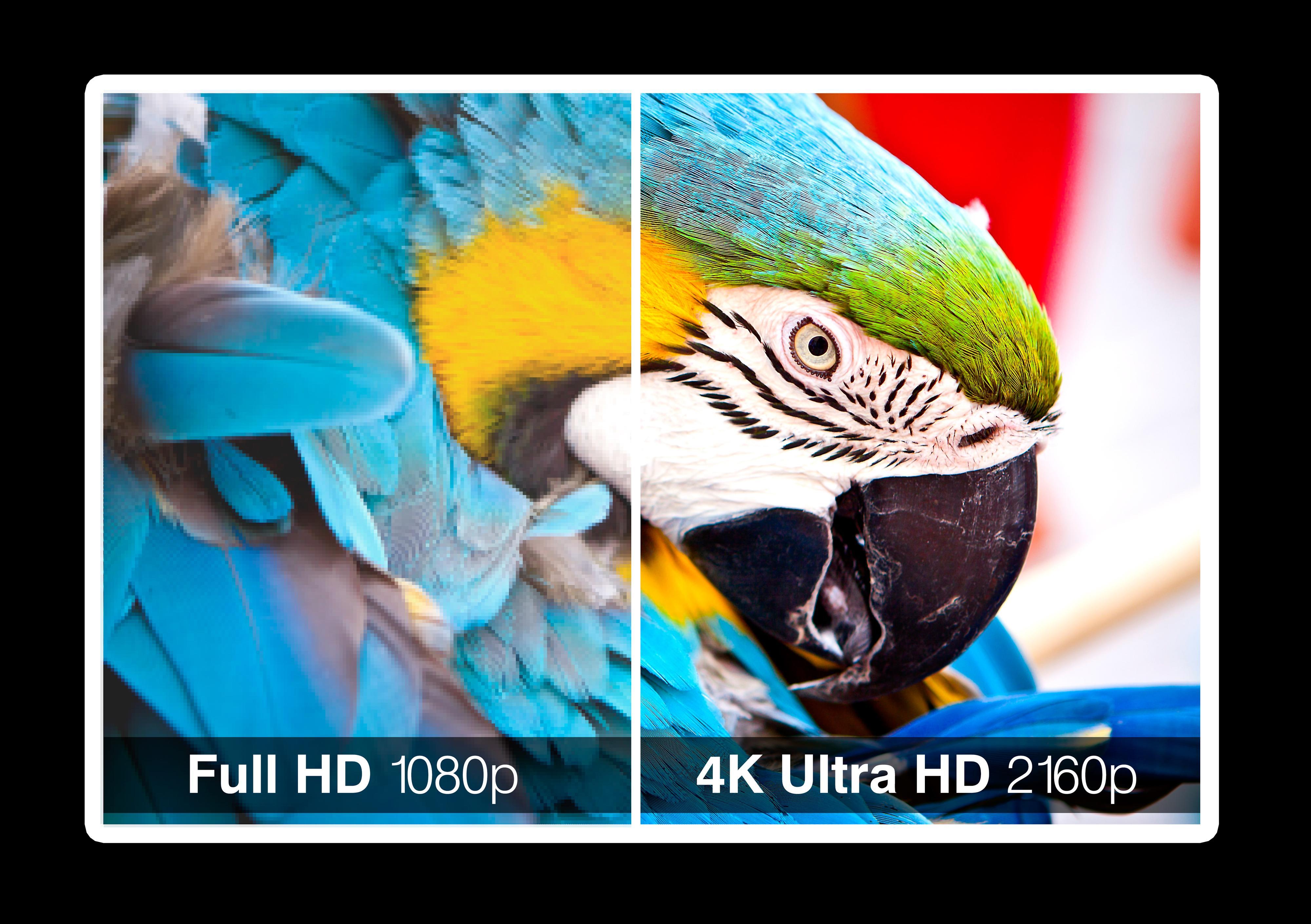 Her kan du se forskjellen i skarphet mellom Full HD og 4K UHD. Foto: Shutterstock