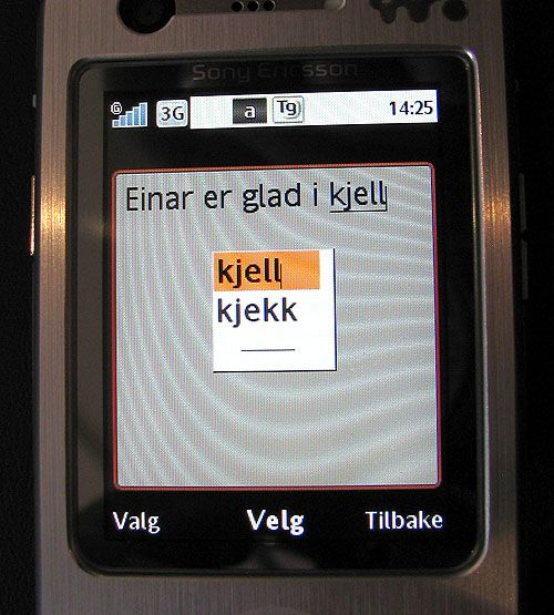 SMS-systemet fungerer bra. Det husker hvilke ord du bruker mest.