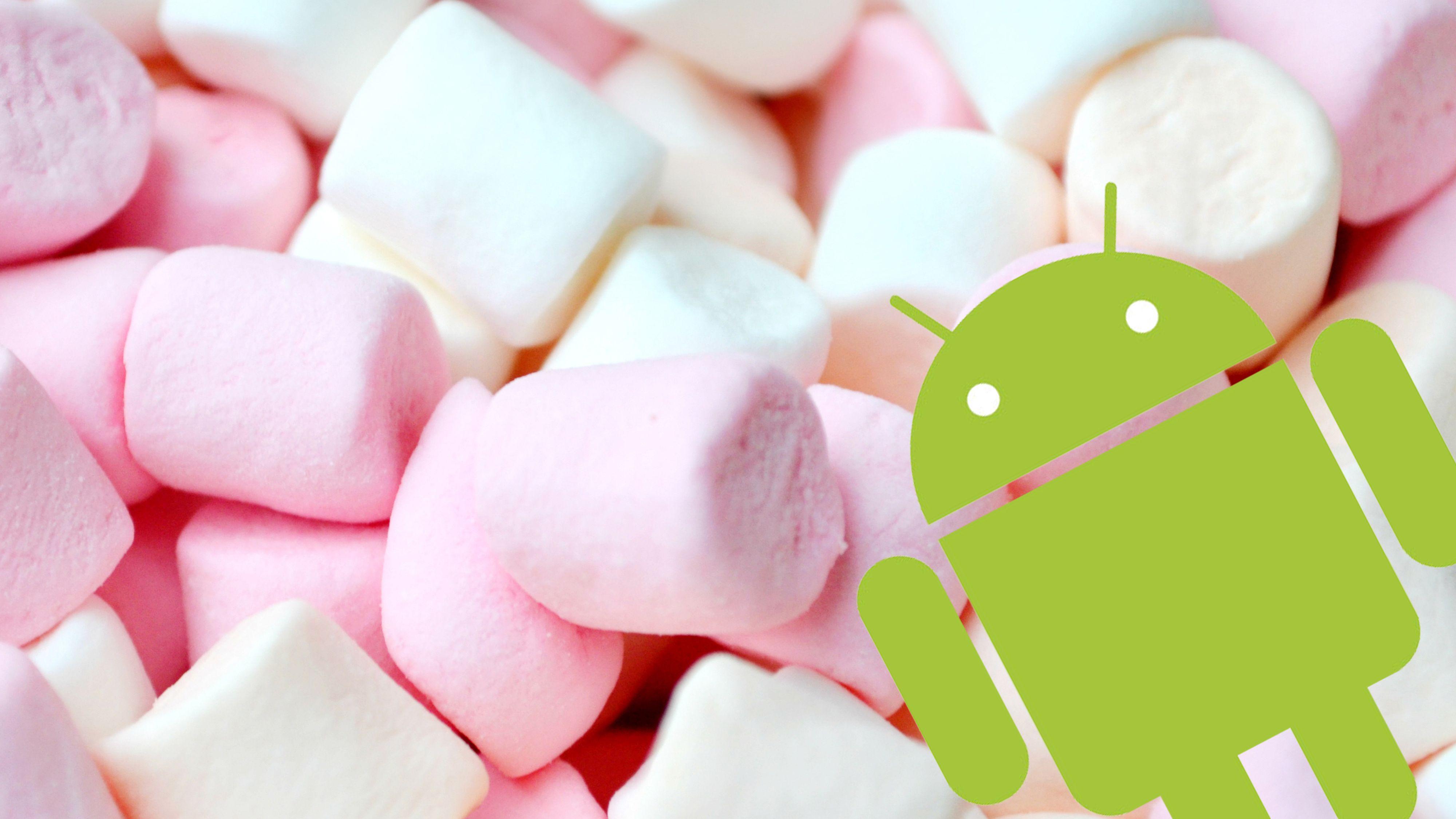 Googles nye Android har fått navn