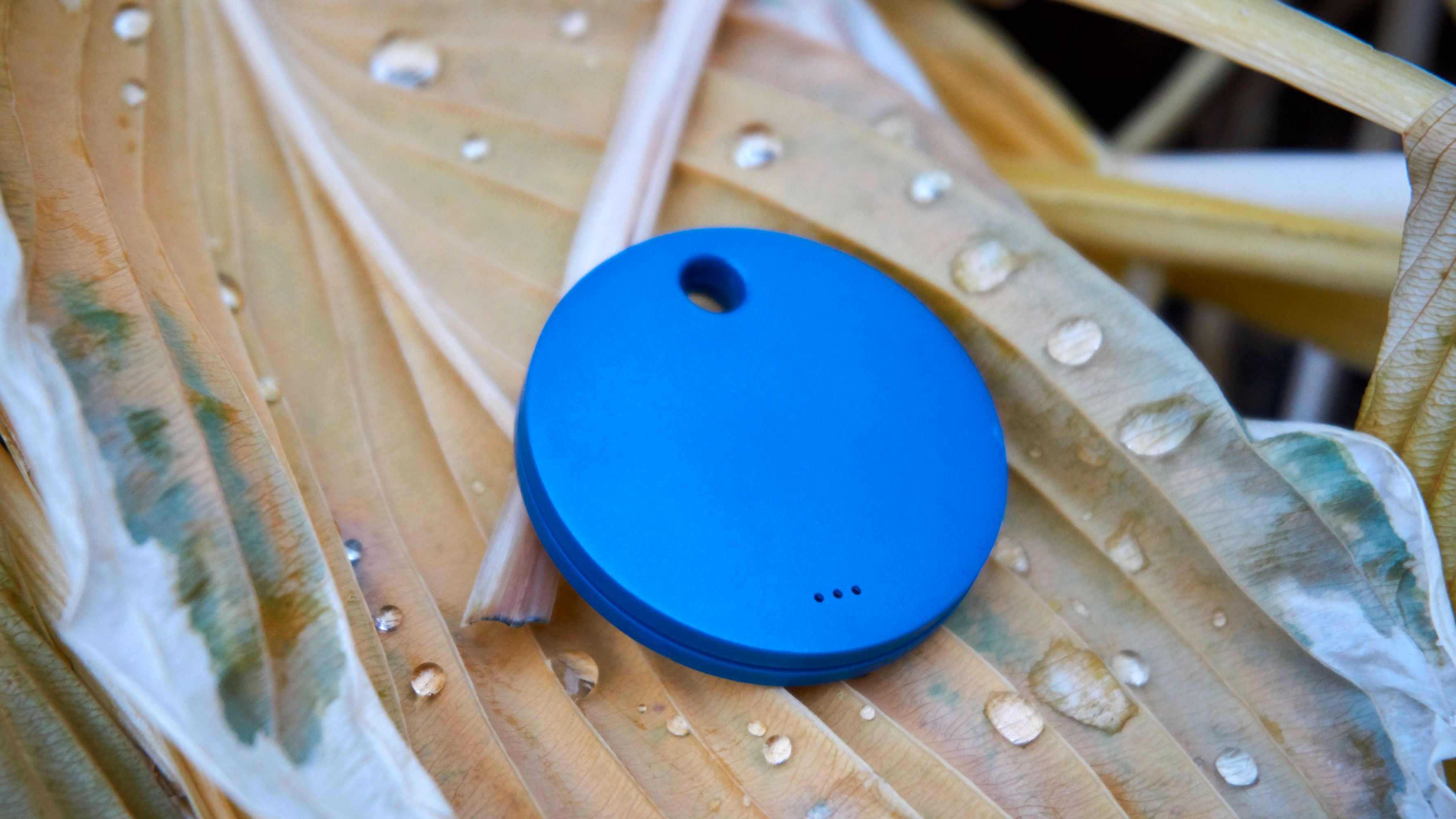 Vanntett, endelig! Den lille – men kraftige – høyttaleren sitter bakpå brikken, i form av tre hull.