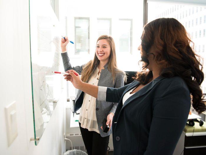 Svart belte i ledelse og opptatt av gode brukeropplevelser? Tripletex søker Head of Customer Success
