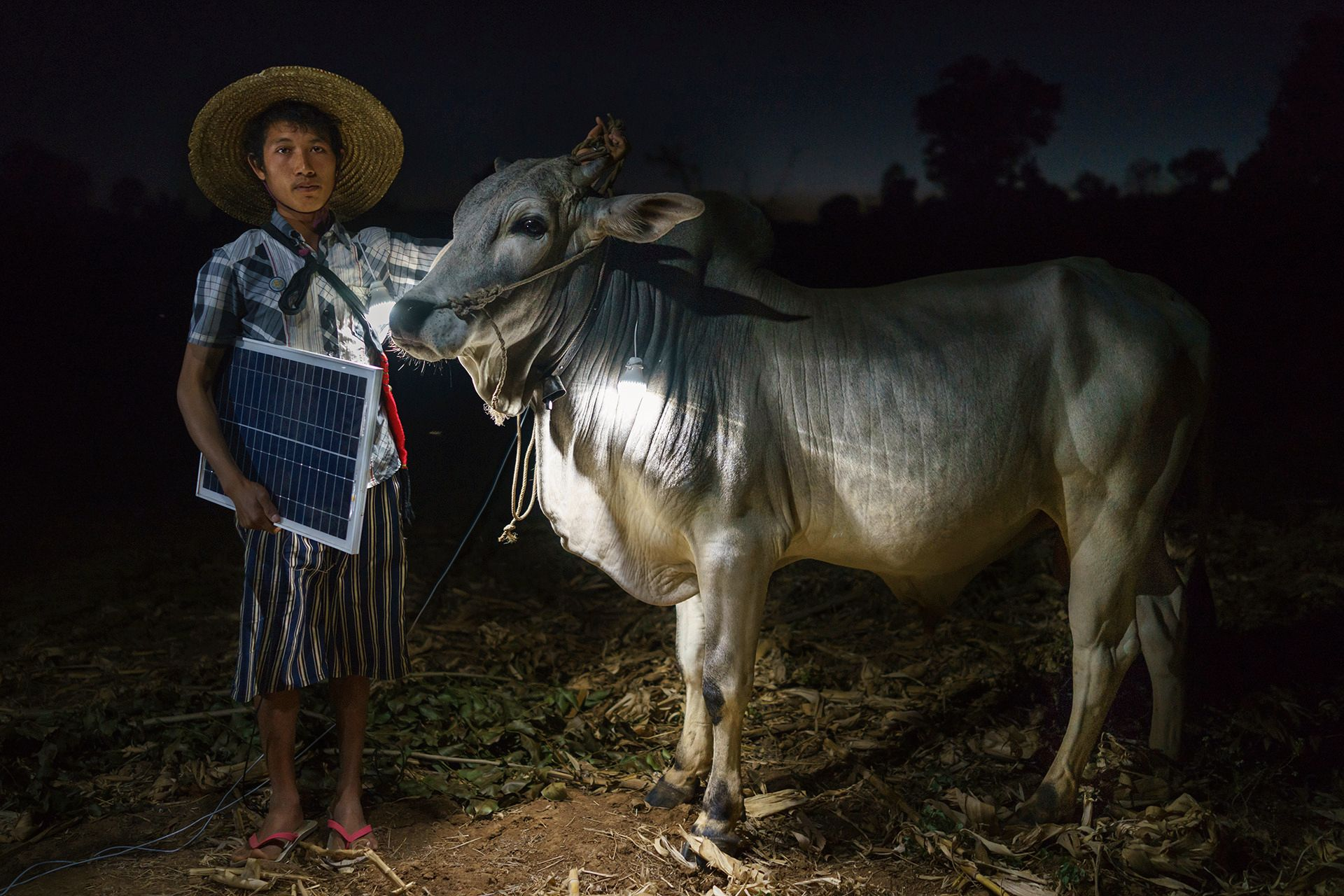Mg Ko, 20 years old. A Shan farmer with his cow in Lui Pan Sone Village. Kayah State. Myanma. Foto: Ruben Salgado Escudero, Spain, SHORTLIST, Portraiture, Professional Competition, 2015 Sony World Photography Awards