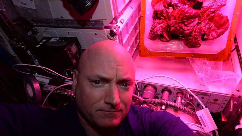 I dag spiser astronautene salat dyrket i verdensrommet