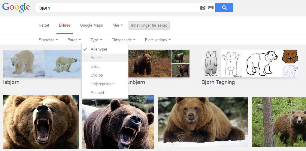 Bjørn eller Bjørn, det er spørsmålet.