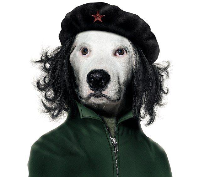 Det omstridte manipulerte bildet av Che Guevara som hund.