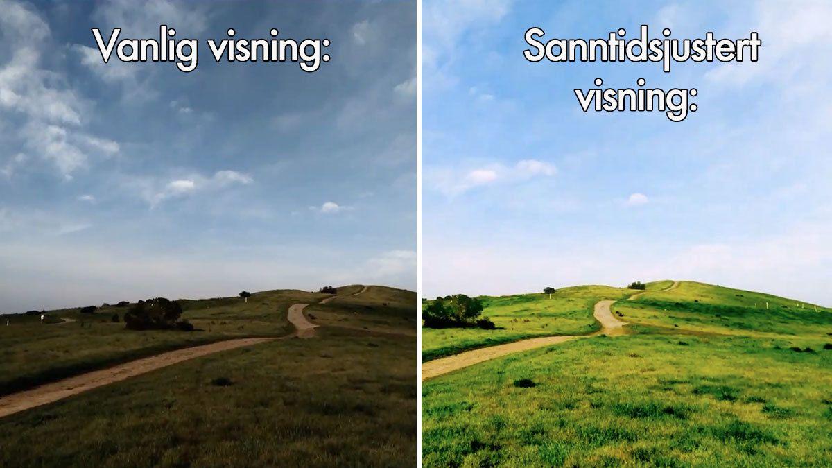 Til venstre er bildet i sin originale form, mens den høyre delen er bildet etter sanntidsredigeringen med den nye algoritmen.