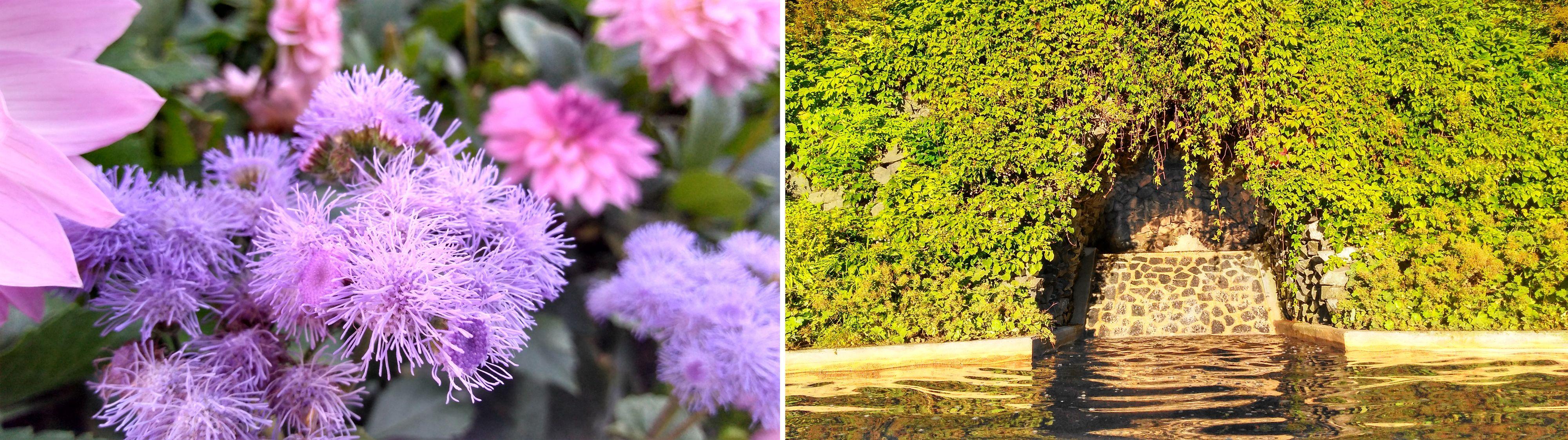 Nei, de lilla blomstene skal være knallblå! Og parken er veeeeldig grønn.