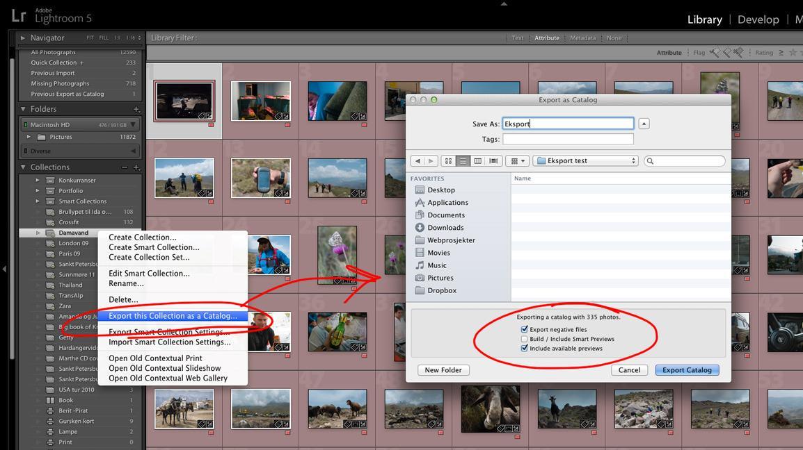 Eksport av bilder som Katalog.
