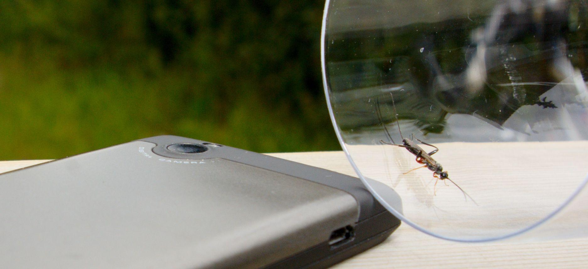 På baksiden er det et deksel som skriker metall - uten å være laget av det.Foto: Einar Eriksen