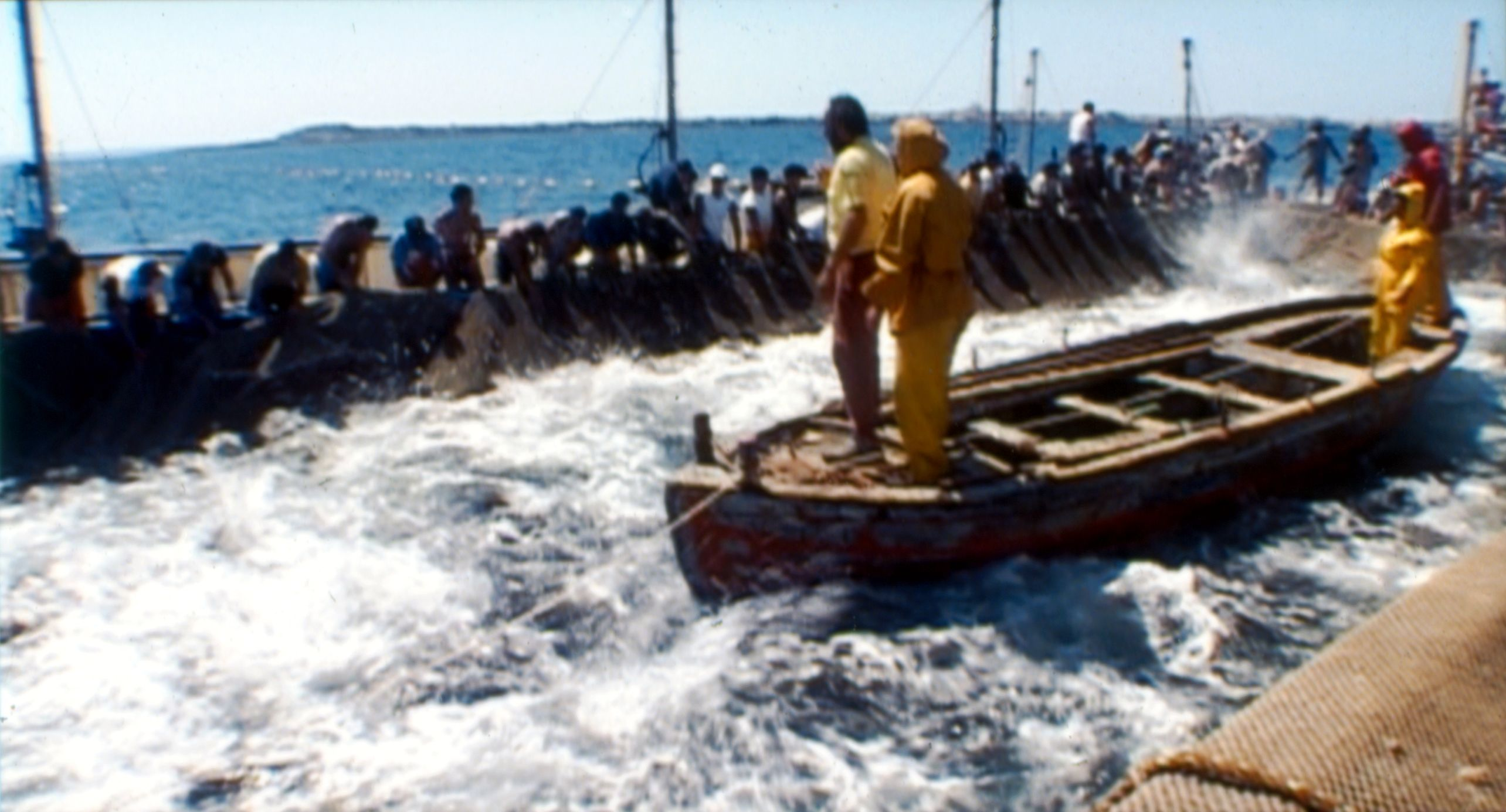 Tunfiskfangst på Sardinia.