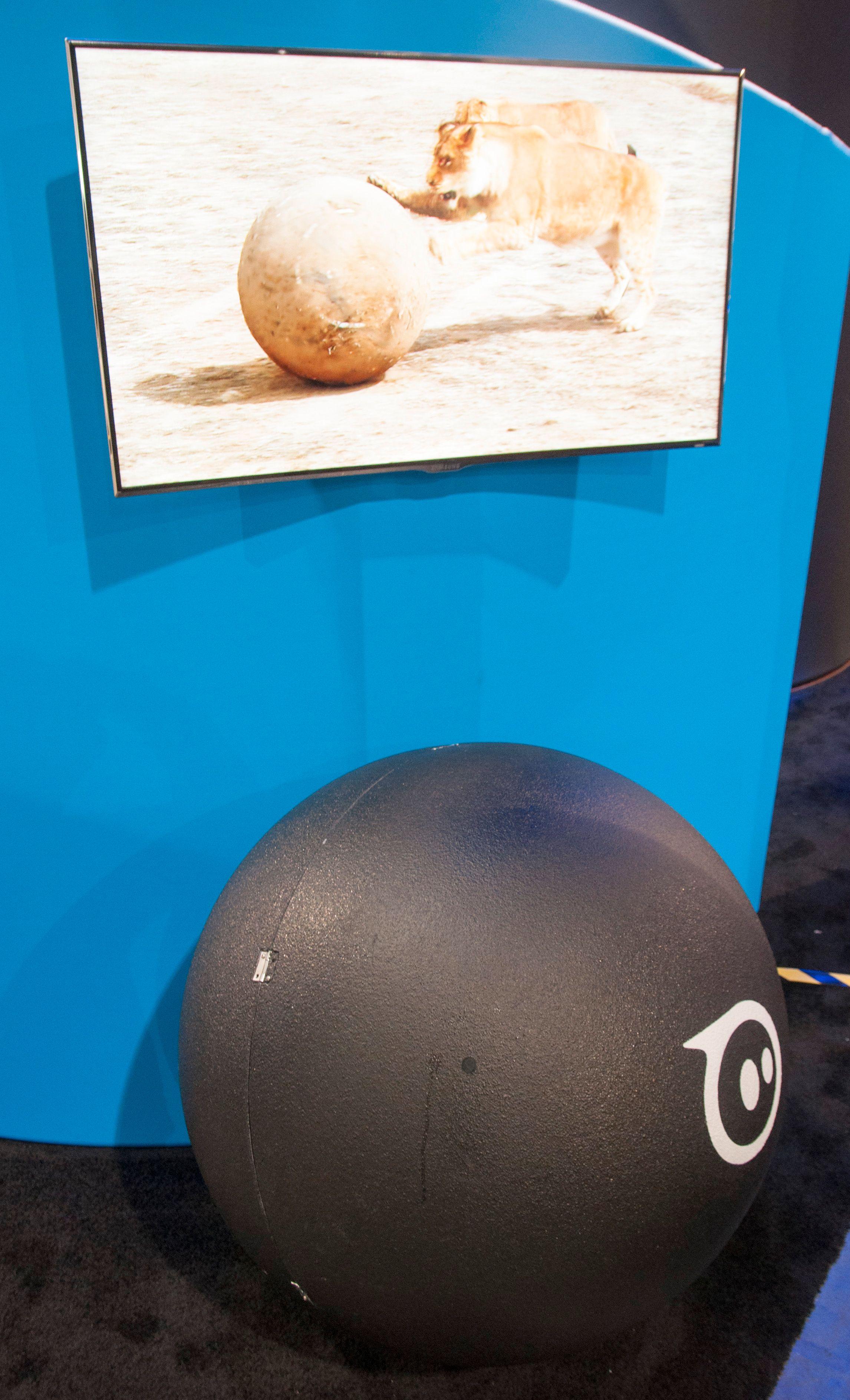 Som del av et PR-stunt lagde Orbotix en gigantversjon av Sphero, som blant annet ble brukt som