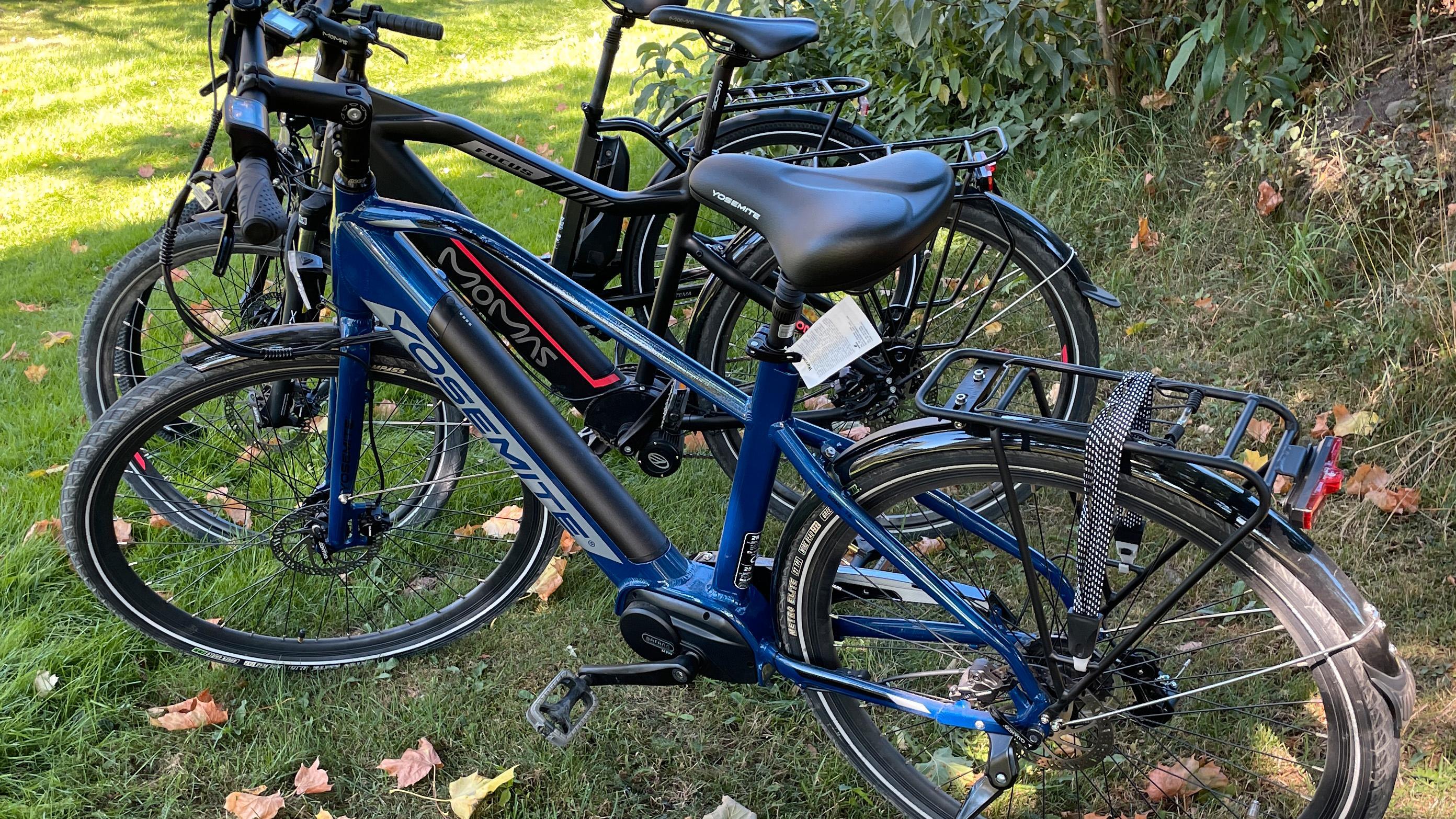 Man kan diskutere om sykkelsetet på den billigste Biltema-sykkelen er mer sykkelsadel eller krakk. Men det er heldigvis en relativt billig ting å bytte ut - og mange som ikke sykler så ofte liker større seter bedre enn svært smale. Ingen av testerne satte pris på dette setet.