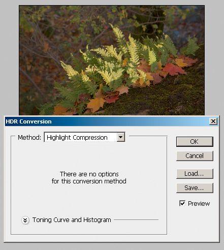 Ved å velge Highlight Compression (eller Exposure and Gamma) til både visning og tonemapping (HDR Conversion), kan man bruke de vanlige verktøyene i Photoshop til å lage en LDR-versjon.