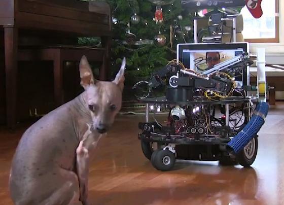 DarwinBot og hund