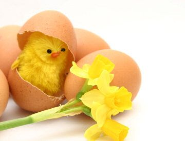 Ha en god påske! - Artikkel - Tek.no