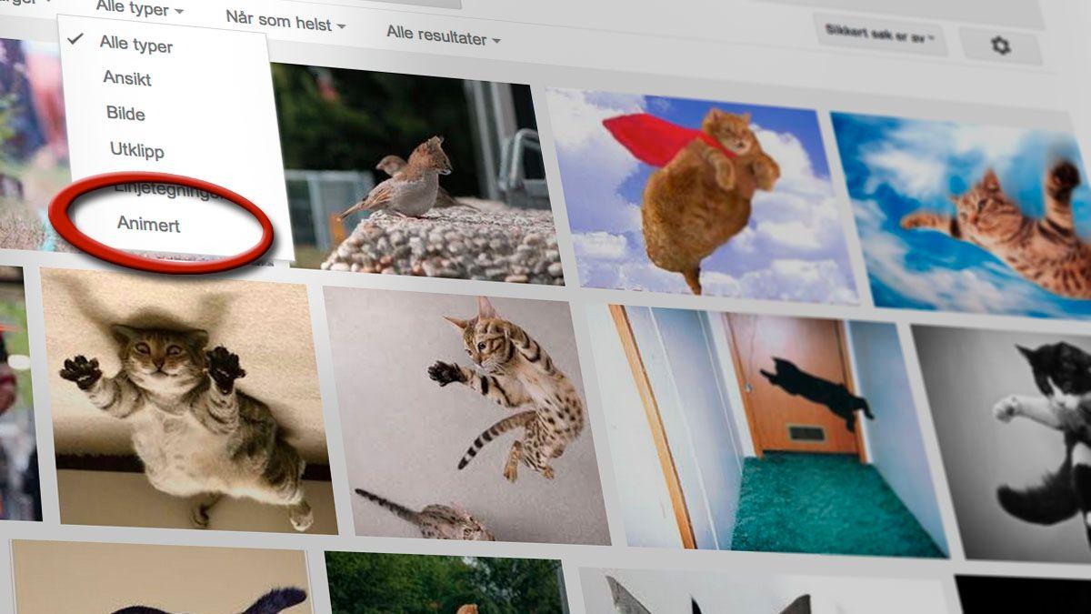 Endelig lar Google deg søke etter gif-bilder