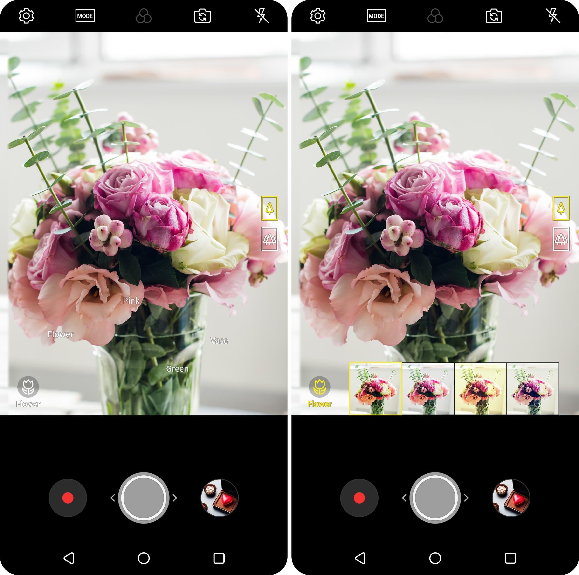 Vision AI-teknologien er i stand til å gjenkjenne flere elementer i bildet helt på egen hånd.