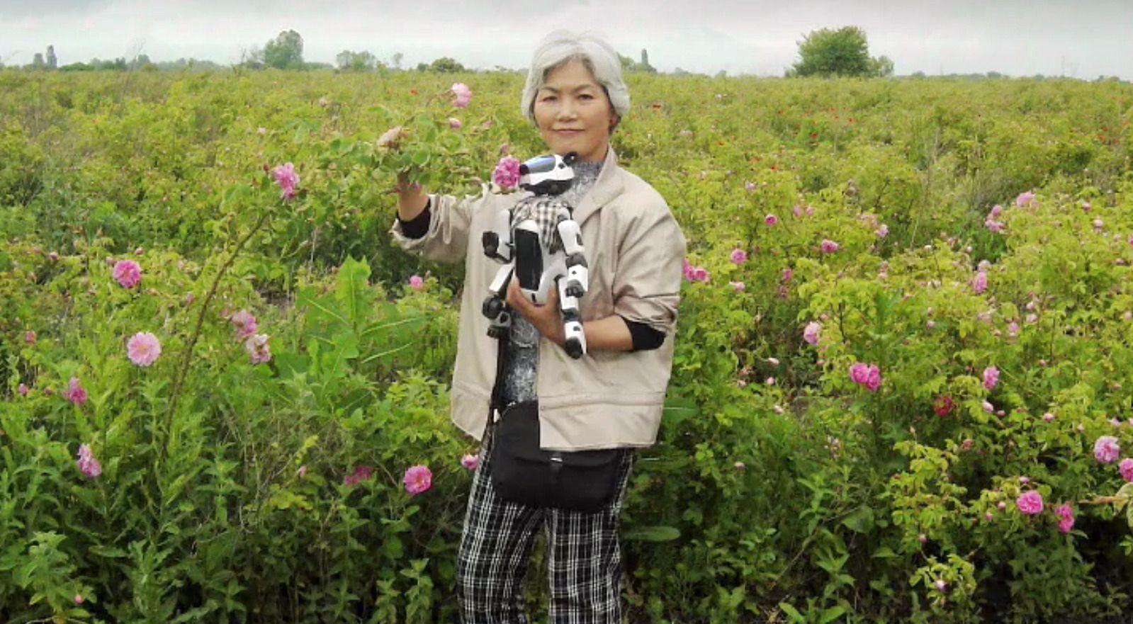 AIBO-eier Michiko Sakurai går ingen steder uten AIBO-en sin. Foto: The New York Times