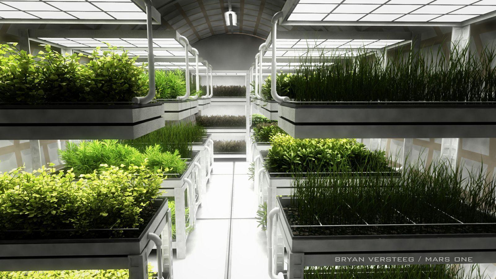 Plantefarm.Foto: Mars One
