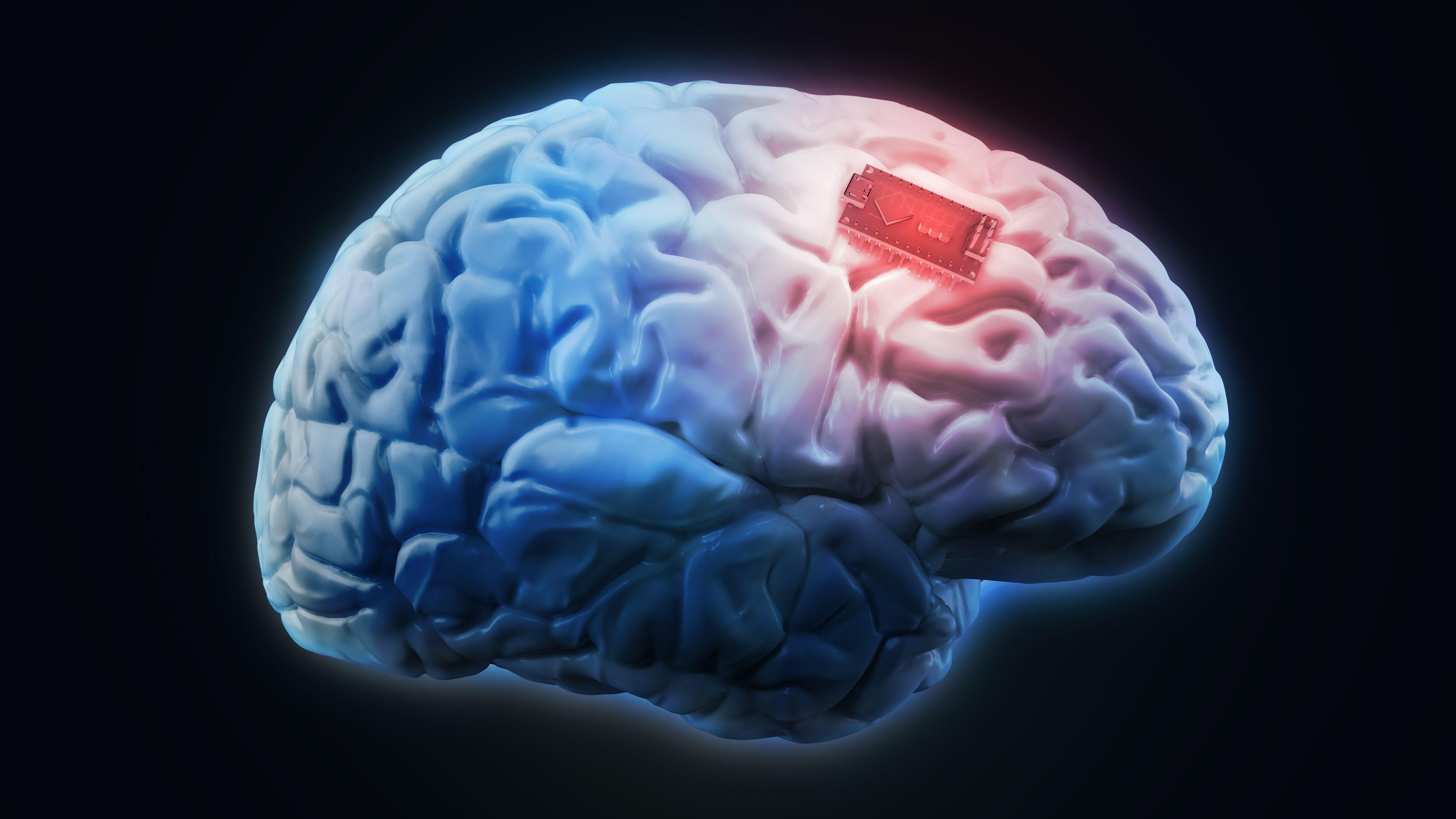 Nå finnes det en databrikke som kan «lage» nye minner i hjernen