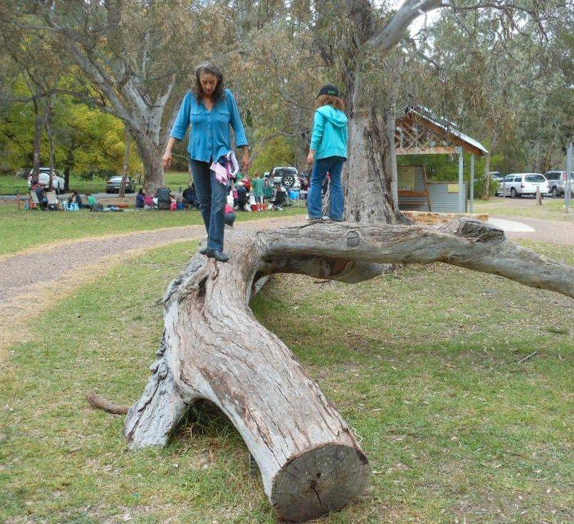 Barn skal få lov til å forme sine egne nasjonalparker i Adelaide. Her fra Hawthorndene, Adelaide, Australia. Foto: Flickr/Michael Coghlan