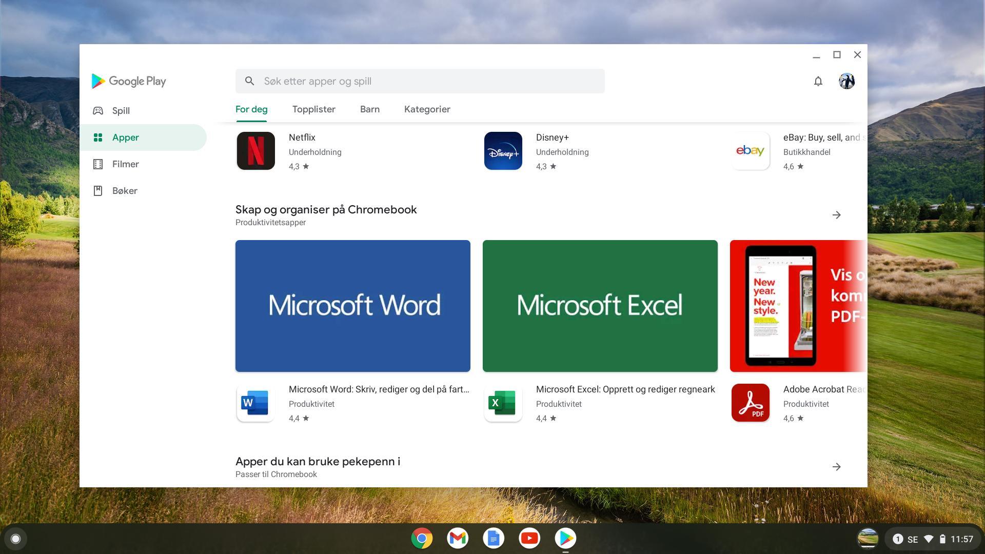 Fra Google PlayStore kan du hente ned apper, dersom du ikke bare vil bruke tjenester direkte via nettleseren Chrome.