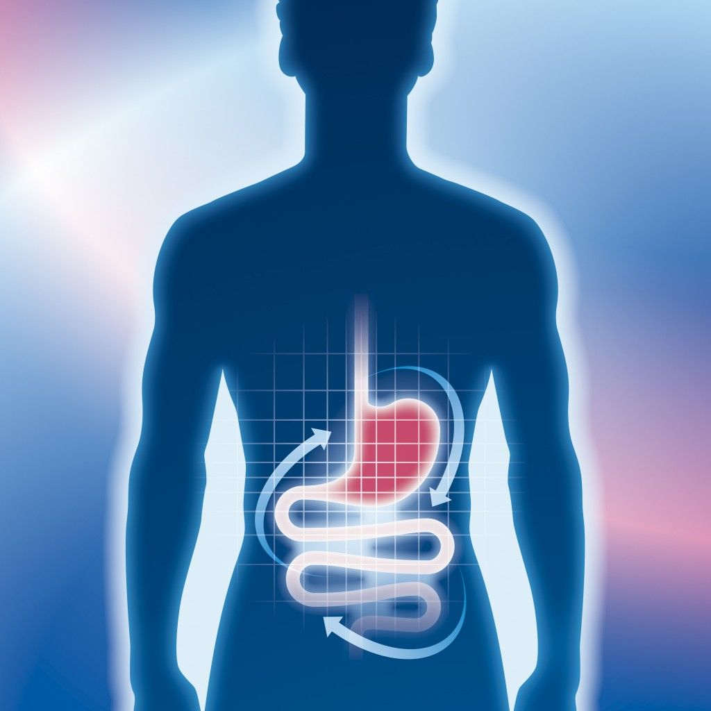blue-outline-red-stomach-1024x1024.jpg