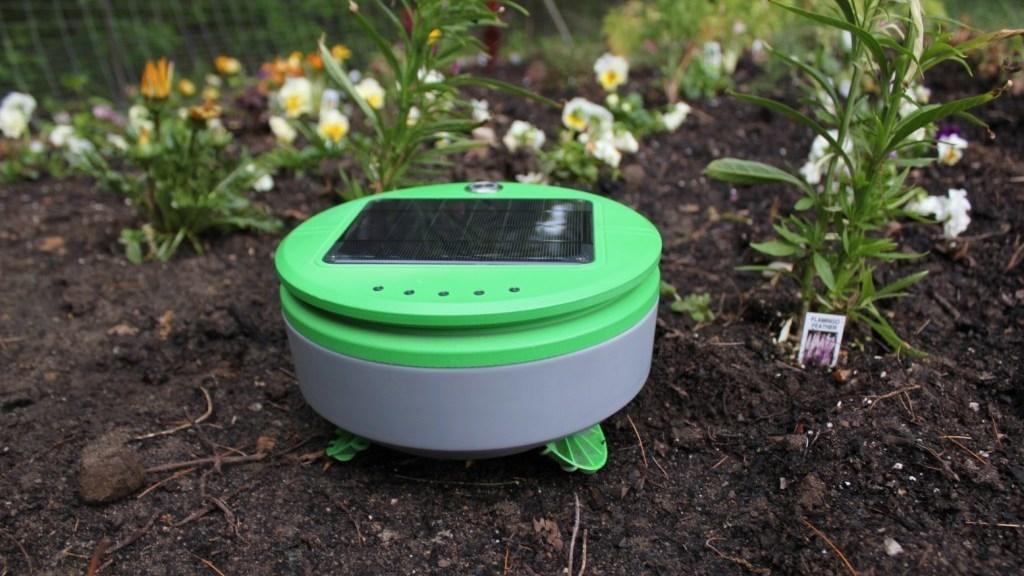 Snart kan robotapokalypsen komme til et blomsterbed nær deg