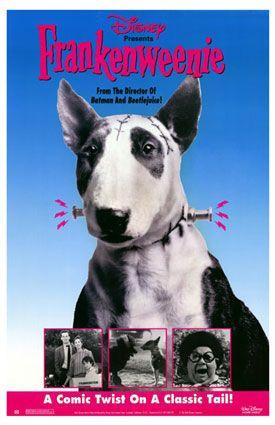 Søt hund med bolter på halsen.