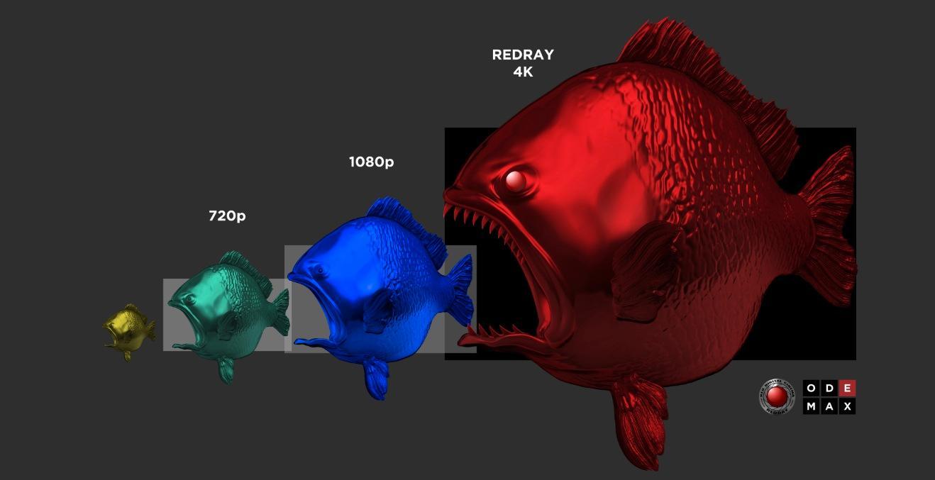 4K-fisken spiser opp de andre puslingene.Foto: RED