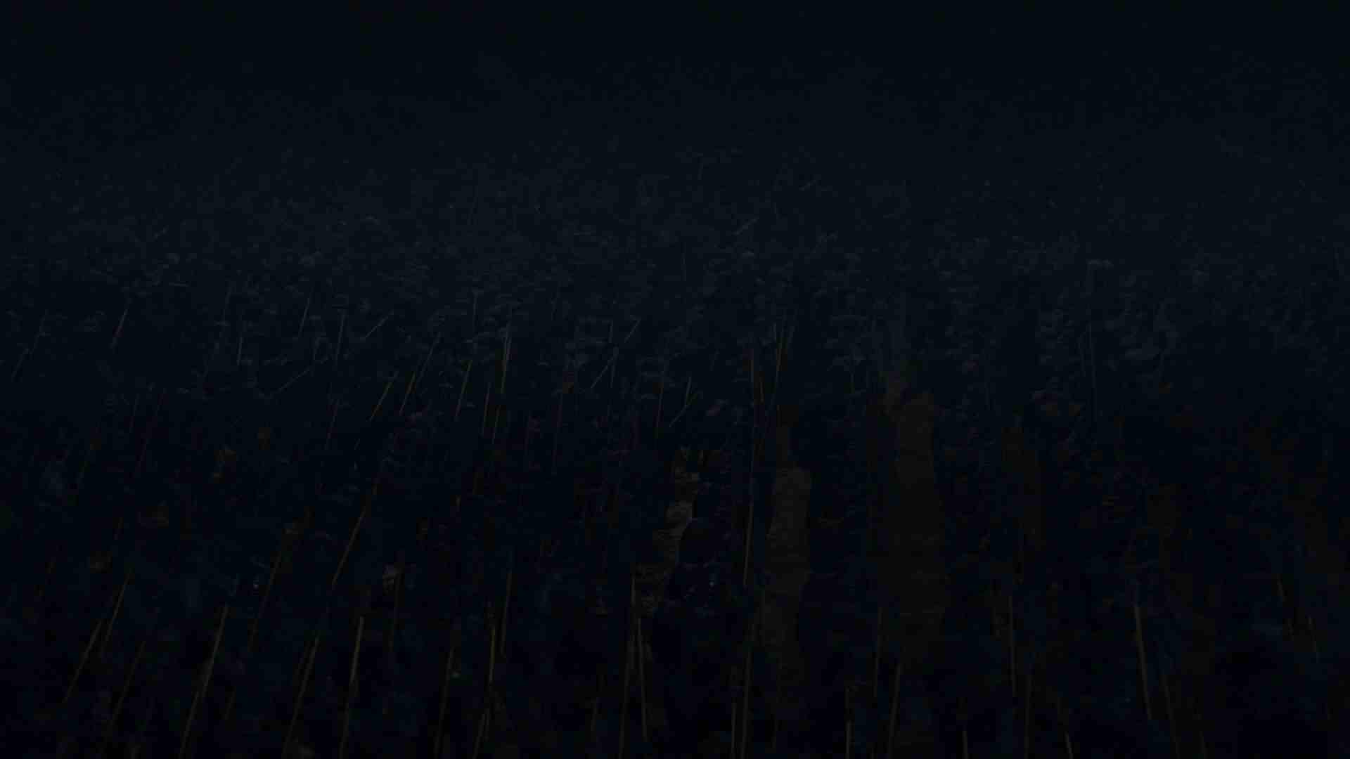 En arme? En skog? Eller kanskje bare en svart vegg? Hva tror du?