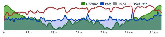 Slik kan en løpetur med intervalltrening se ut i Runkeeper. Rød strek er puls, grønn høydeprofil på løypa og blå hastighet.