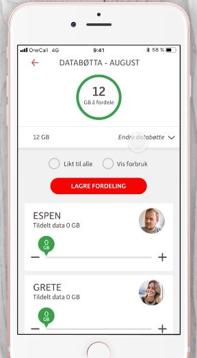 I appen kan du fordele «databøtten» som du vil.