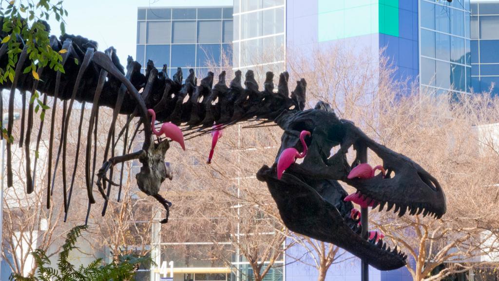 Hils på Stan. Stan er en Tyrannosaurus Rex, og han digger rosa flamingoer. (Foto: Jørgen Elton Nilsen)