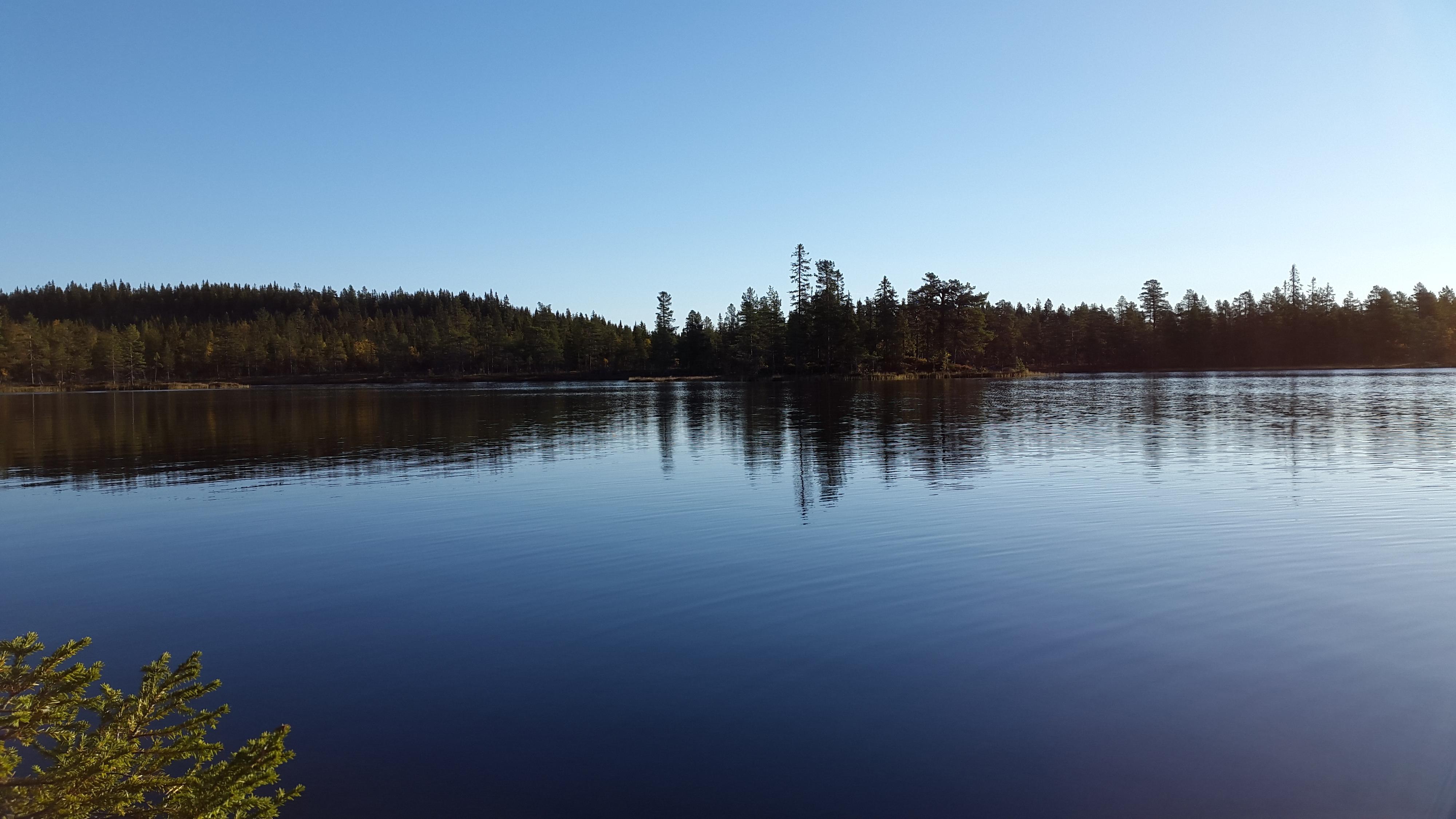 Stille vann i Nordmarka.