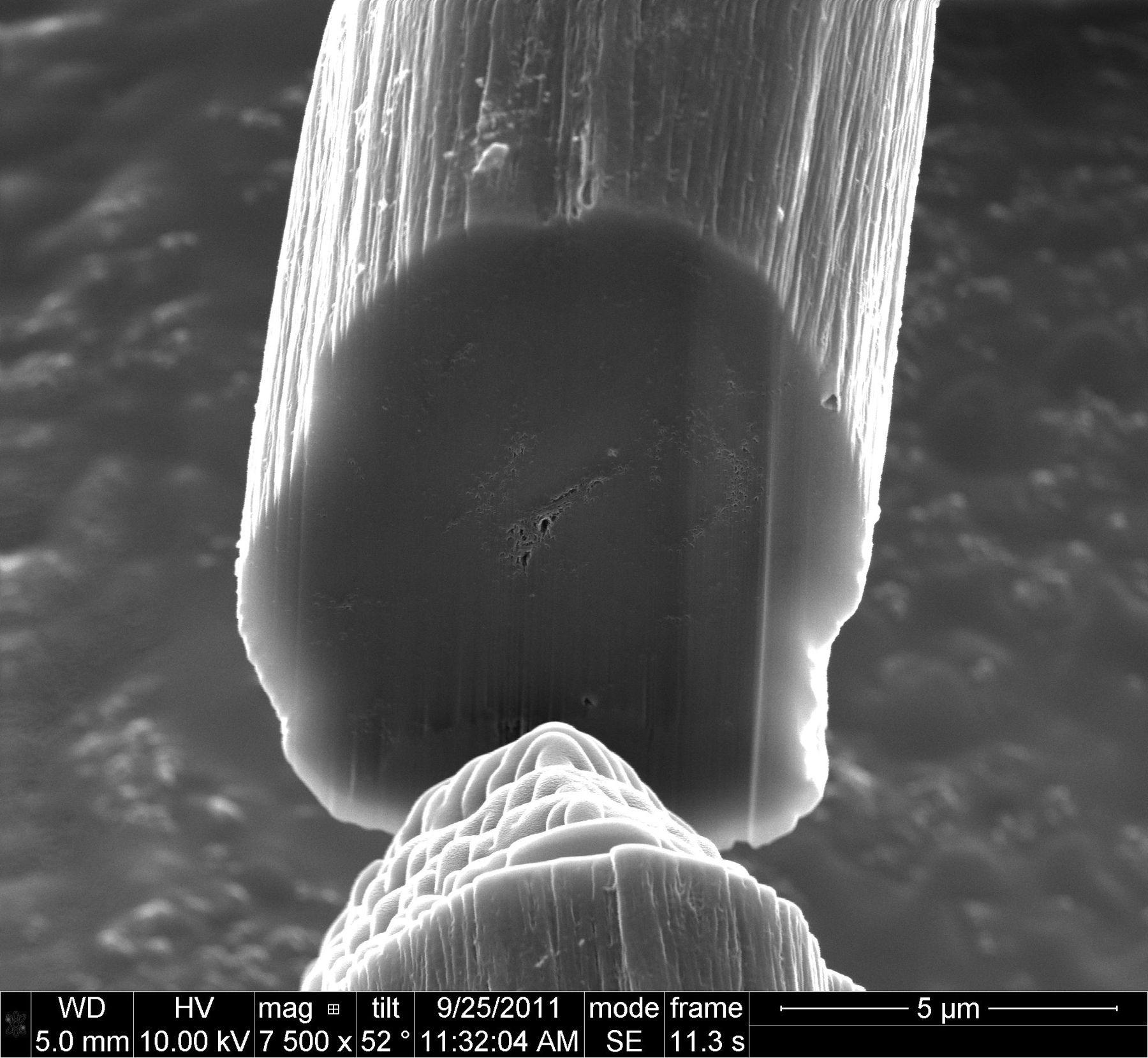 Bildet, tatt med elektronmikroskop, viser et tverrsnitt av et CNT-fiber – som består av flere millioner nanorør.Foto: D. Tsentalovich/Rice University