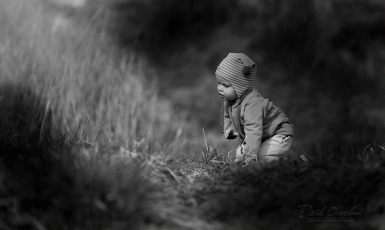 Nysgjerrighet
