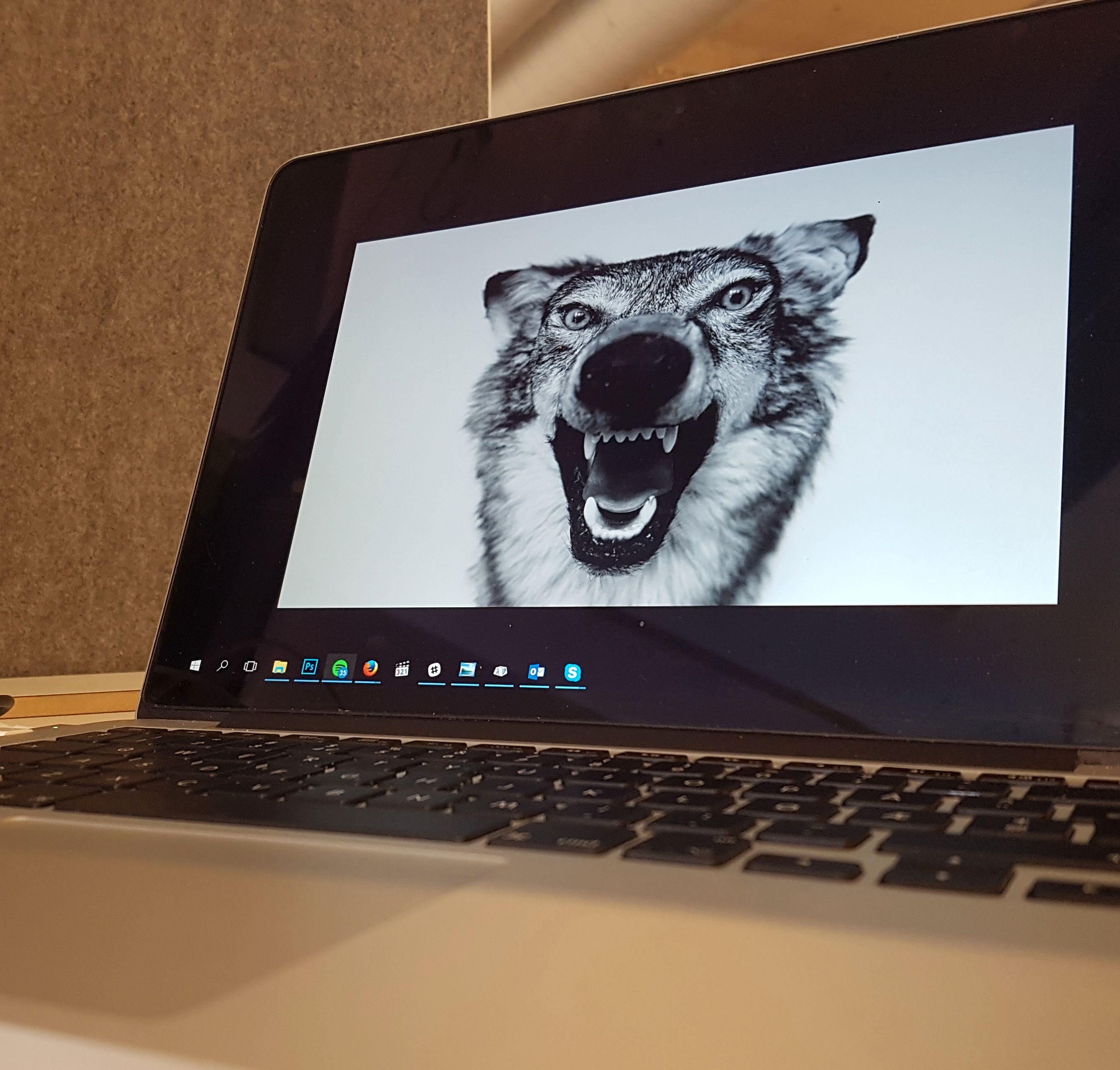 Maskinvaren jeg foretrekker sammen med programvaren jeg foretrekker. Windows 10 har jeg blitt glad i, selv om det har en og annen særhet det også.