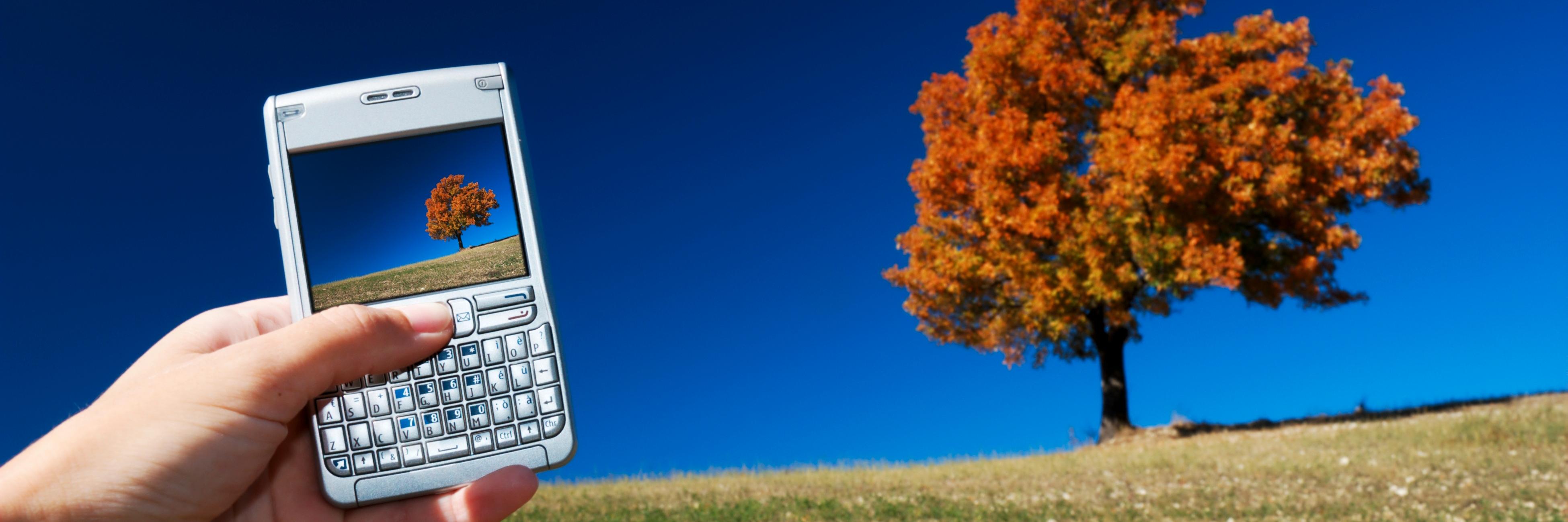 8 tips for å ta lekre bilder med mobilen