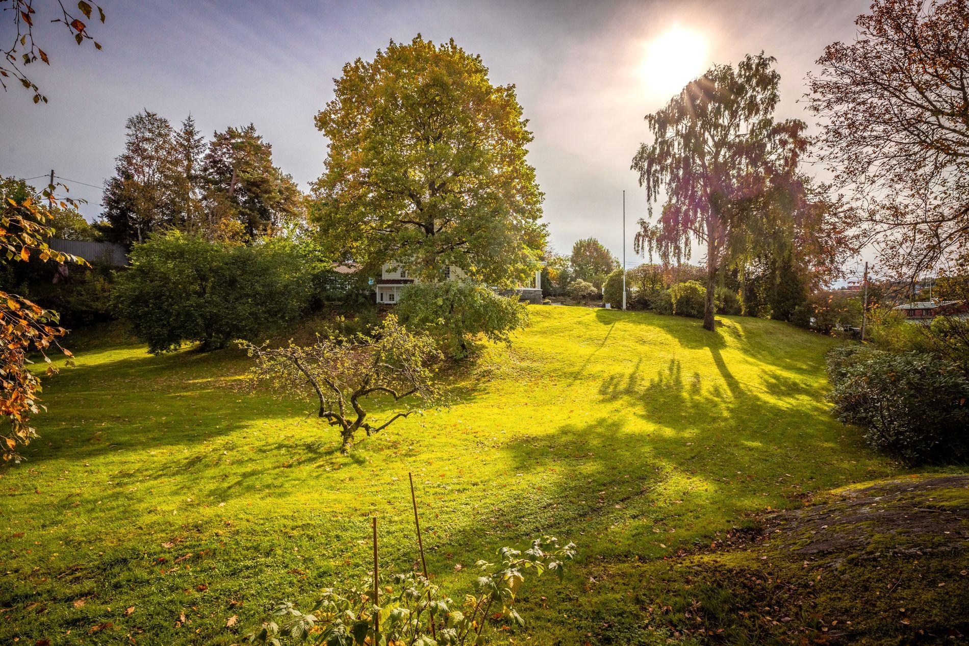 GOD BOLTREPLASS: I hagen er det god plass for barn å løpe og finne på leker.