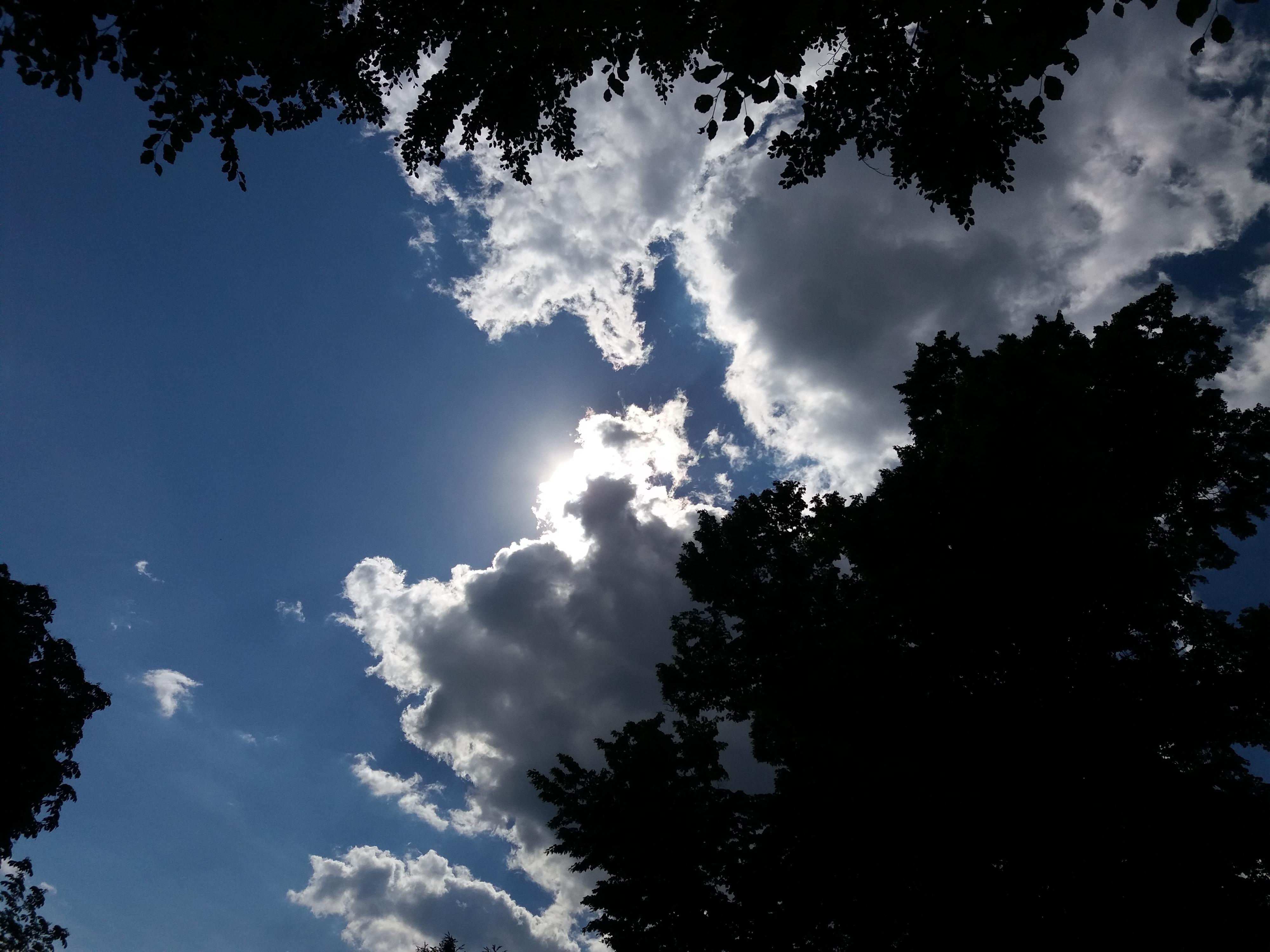 Her satte vi kameraet på en prøve: solen lurer rett bak skyene, og skaper et bilde med store sprik mellom mørke og lyse områder. Som forventet er det ikke mye detaljer å se i tretoppene.