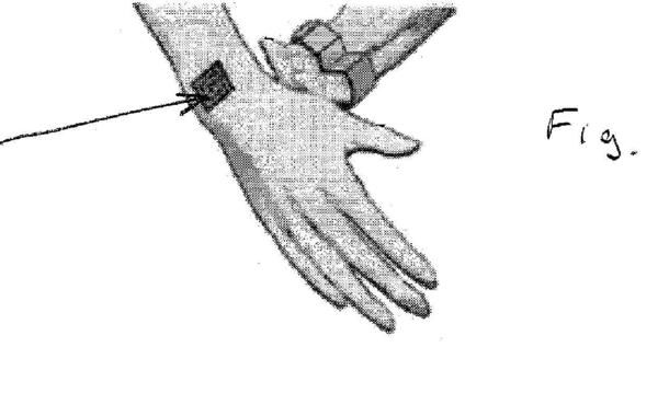 Bilde av patentet (U.S. Patent and Trademark Office)
